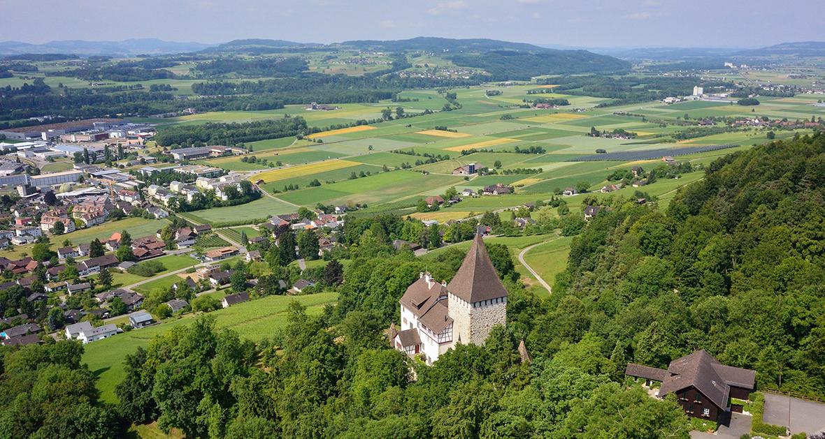 Foto von Weinfelden mit Schloss